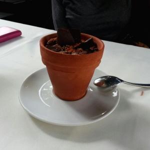 Tierra de Cacao