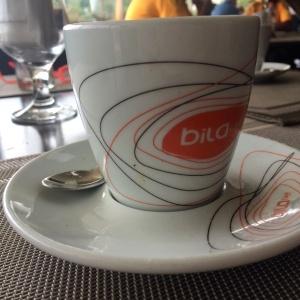 Deliciosa y bien presentada taza de café